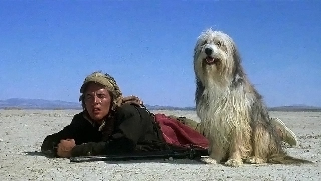 Vic (Don Johnson) and Blood in A Boy and His Dog (1975)