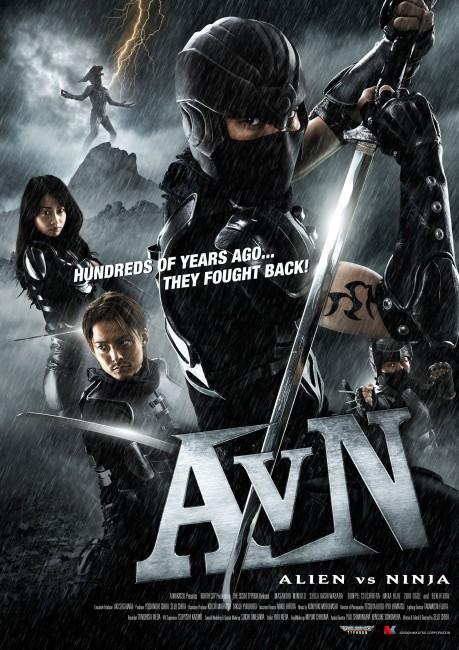 AVN (2010) poster