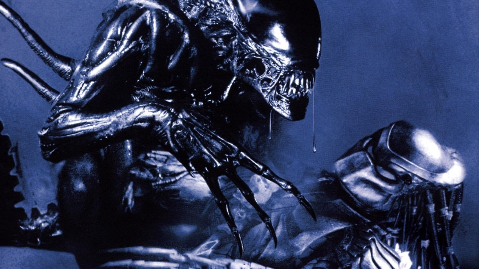 Alien vs Predator in AVP Alien vs Predator (2004)