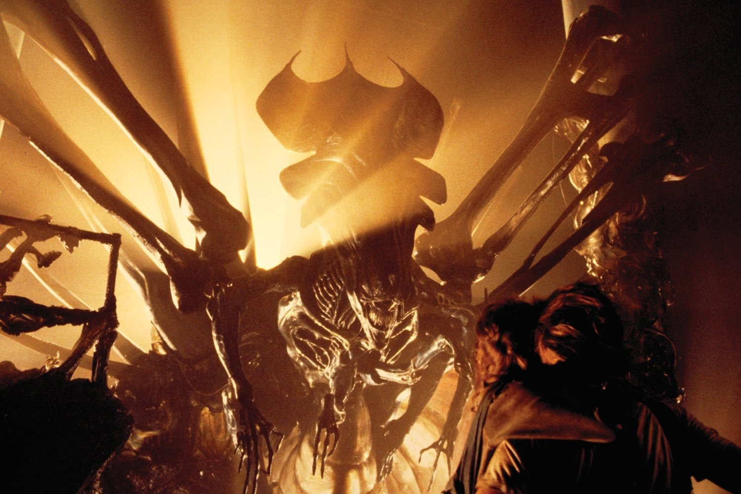 Sigourney Weaver confronts the Alien Queen in Aliens (1986)