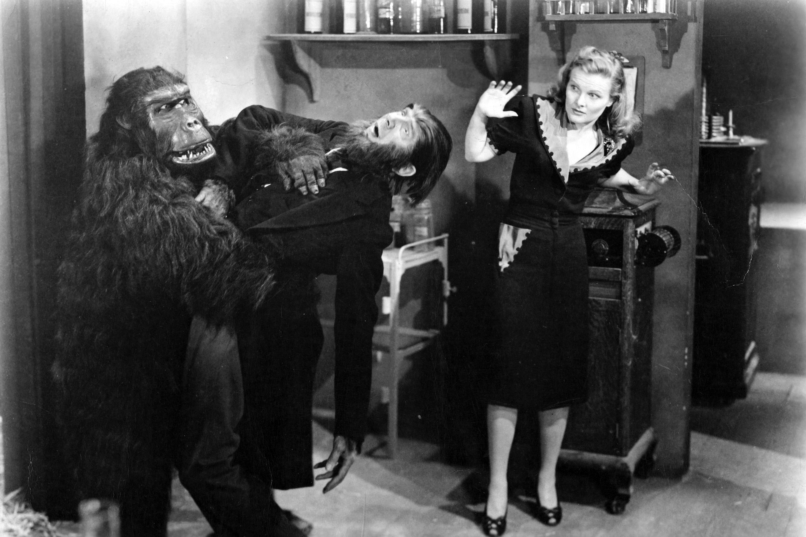 (l to r) The Ape (Emil Van Horn) attacks its master Bela Lugosi as Louise Currie looks on in The Ape Man (1943)