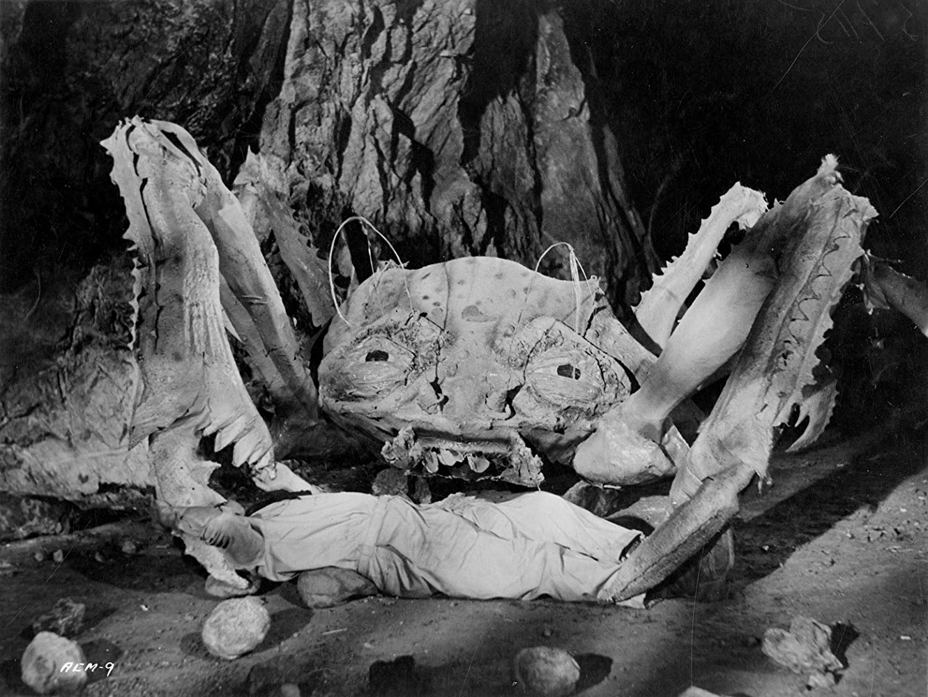 One of the crab monsters from Attack of the Crab Monsters (1957)