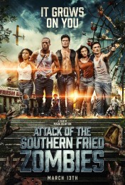 Attack of the Southern Fried Zombies (2017) poster
