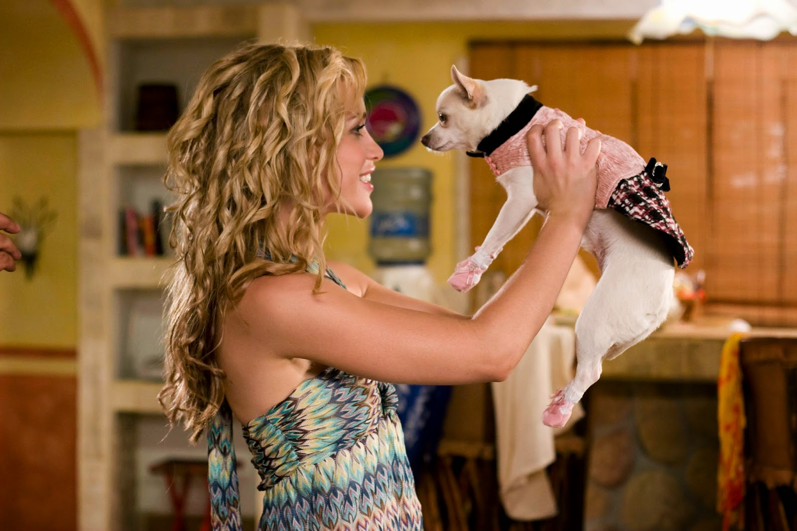 Piper Perabo holding Chloe in Beverly Hills Chihuahua (2008)