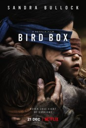 Bird Box (2018) poster