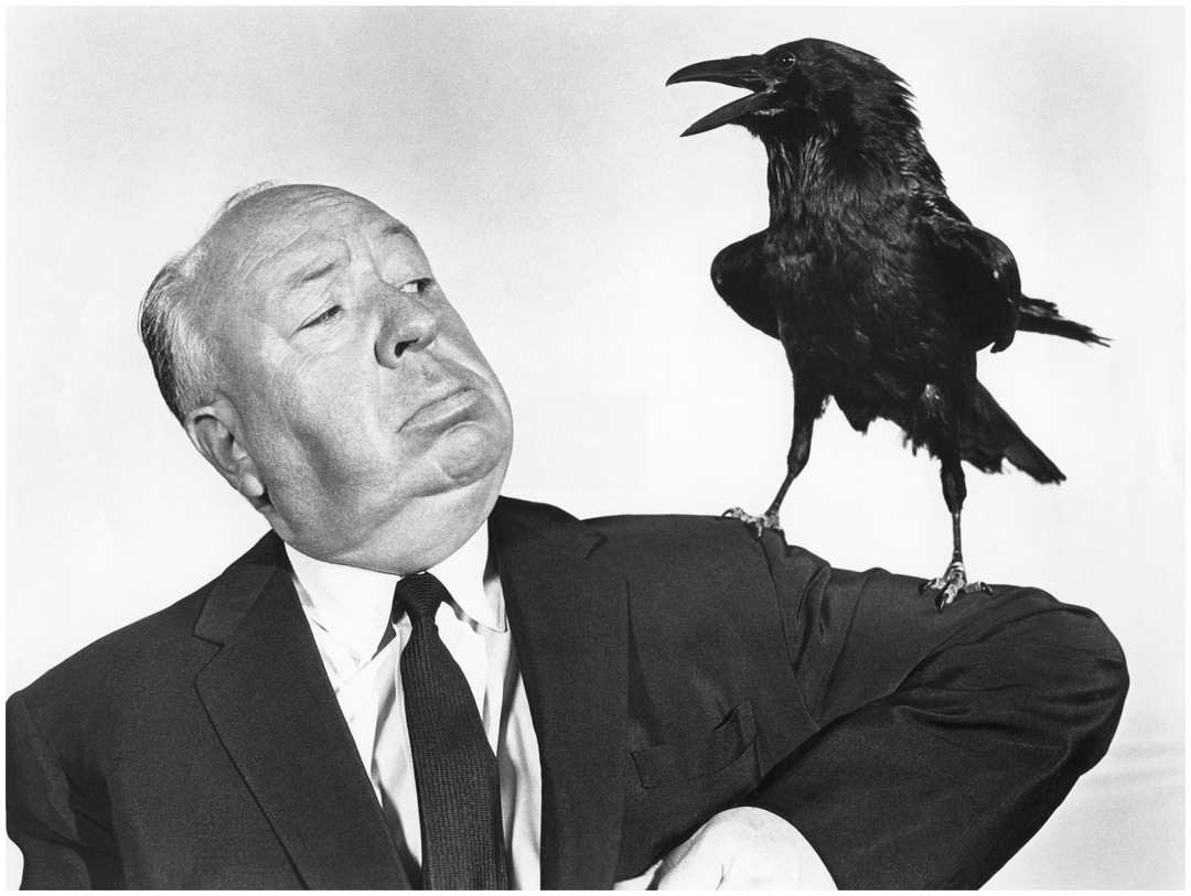 Alfred Hitchcock in The Birds (1963)