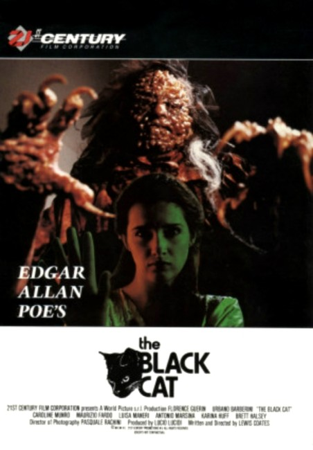 The Black Cat (1990) poster