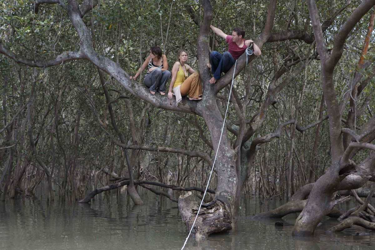 Diana Glenn, Maeve Dermody and Andy Rodoreda trapped in a tree from a lurking crocodile in Black Water (2007)