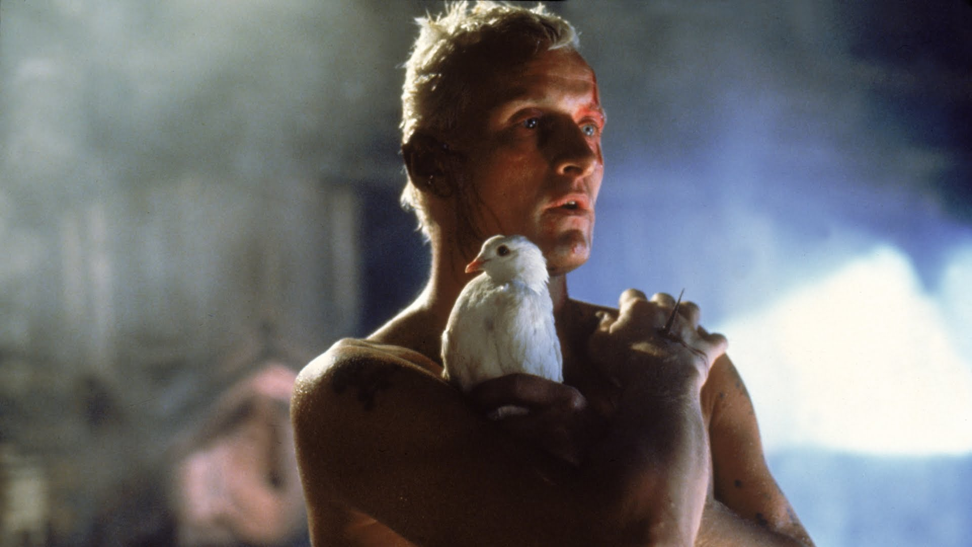 Rutger Hauer as the replicant Roy Batty in Blade Runner (1982)