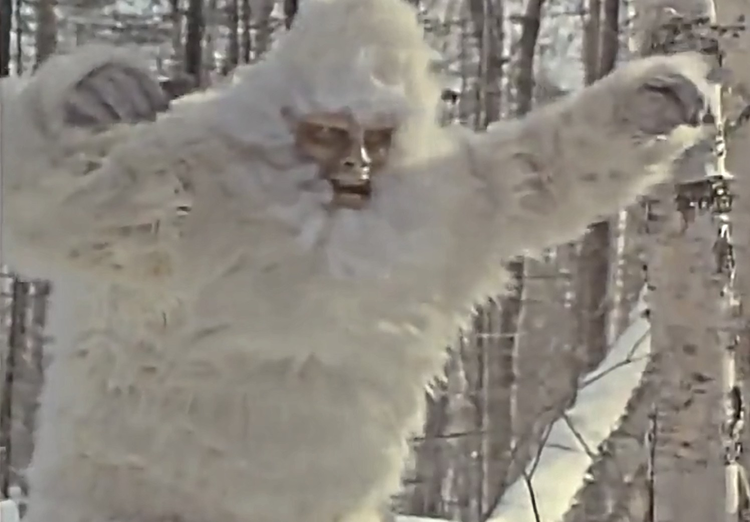 The Bigfoot in The Capture of Bigfoot (1979)