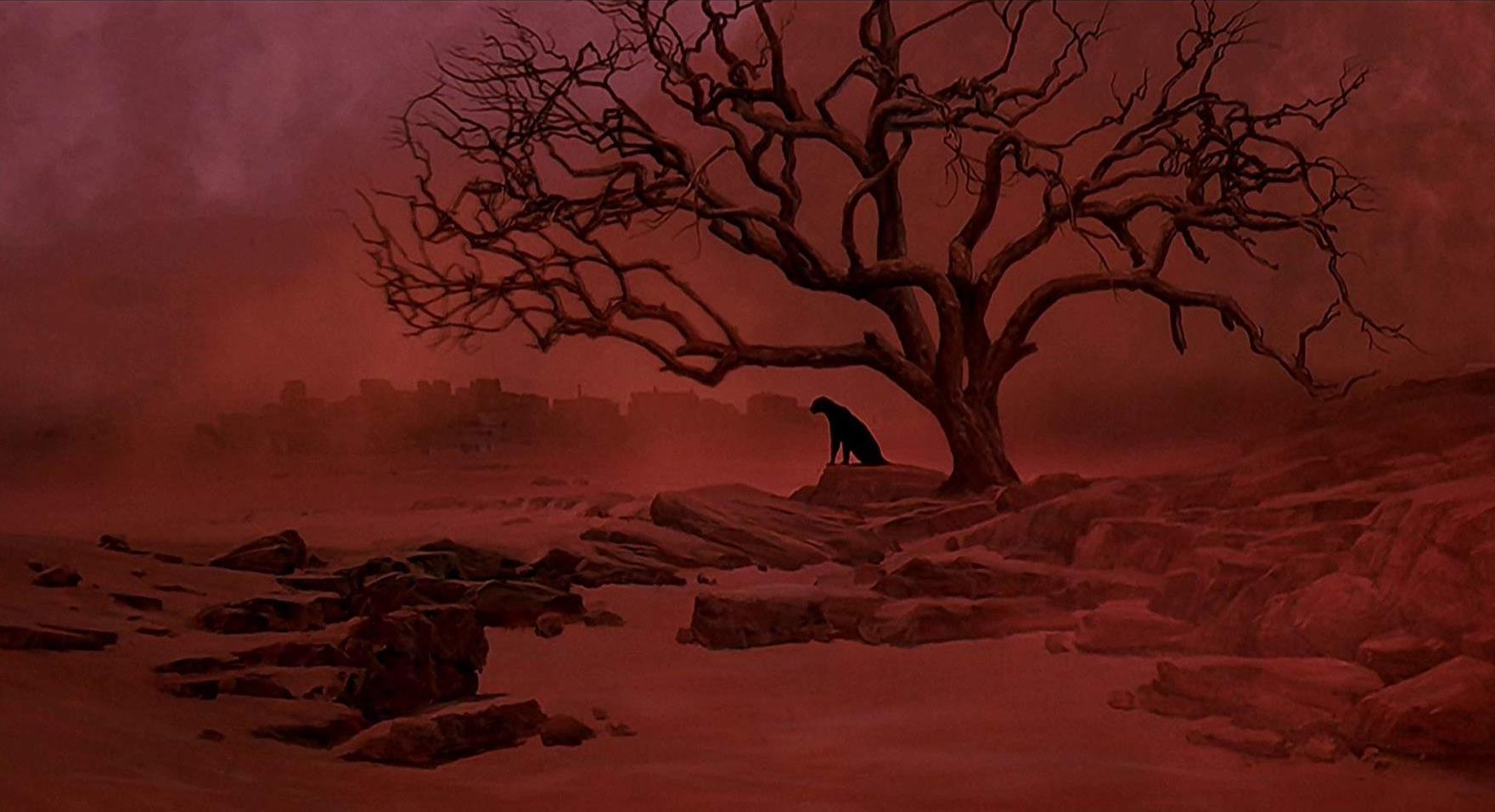 The Leopard Tree Dream sequence - a film of smoulderingly beautiful sensuality - Cat People (1982)