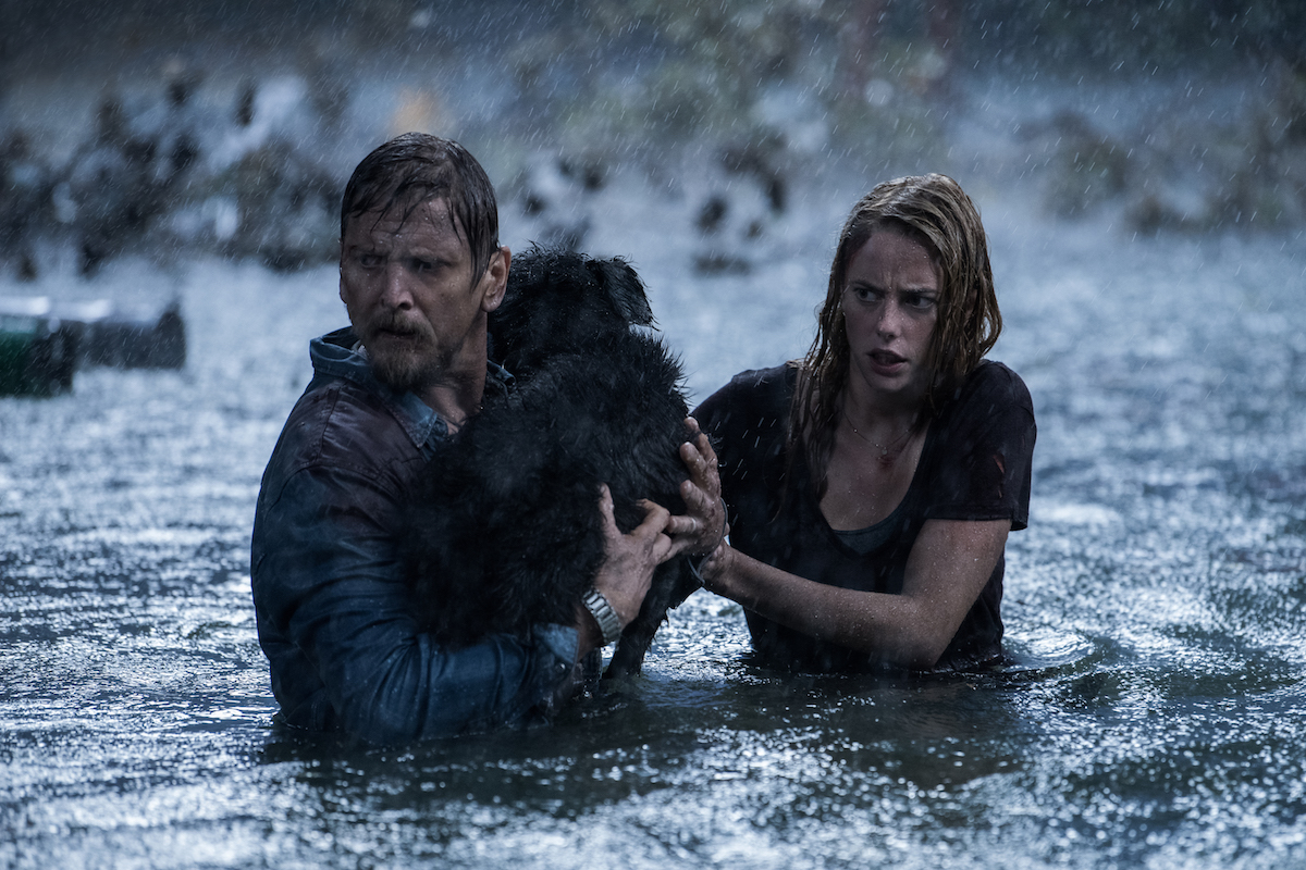 Kaya Scodelario and father Barry Pepper try to make it to safety in Crawl (2019)