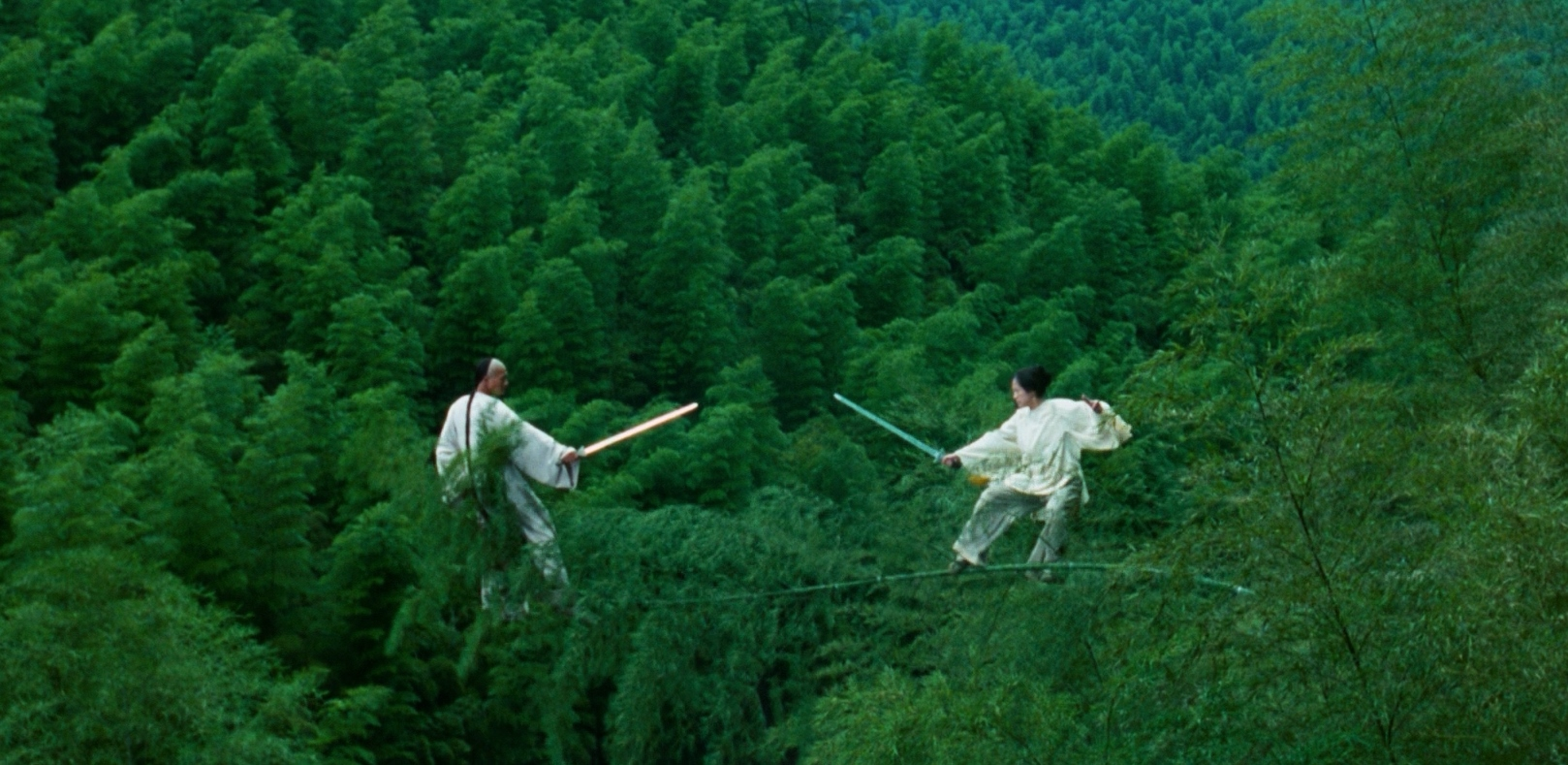 Chow Yun Fat and Zhang Ziyi dueling in the tree tops in Crouching Tiger, Hidden Dragon (2000)