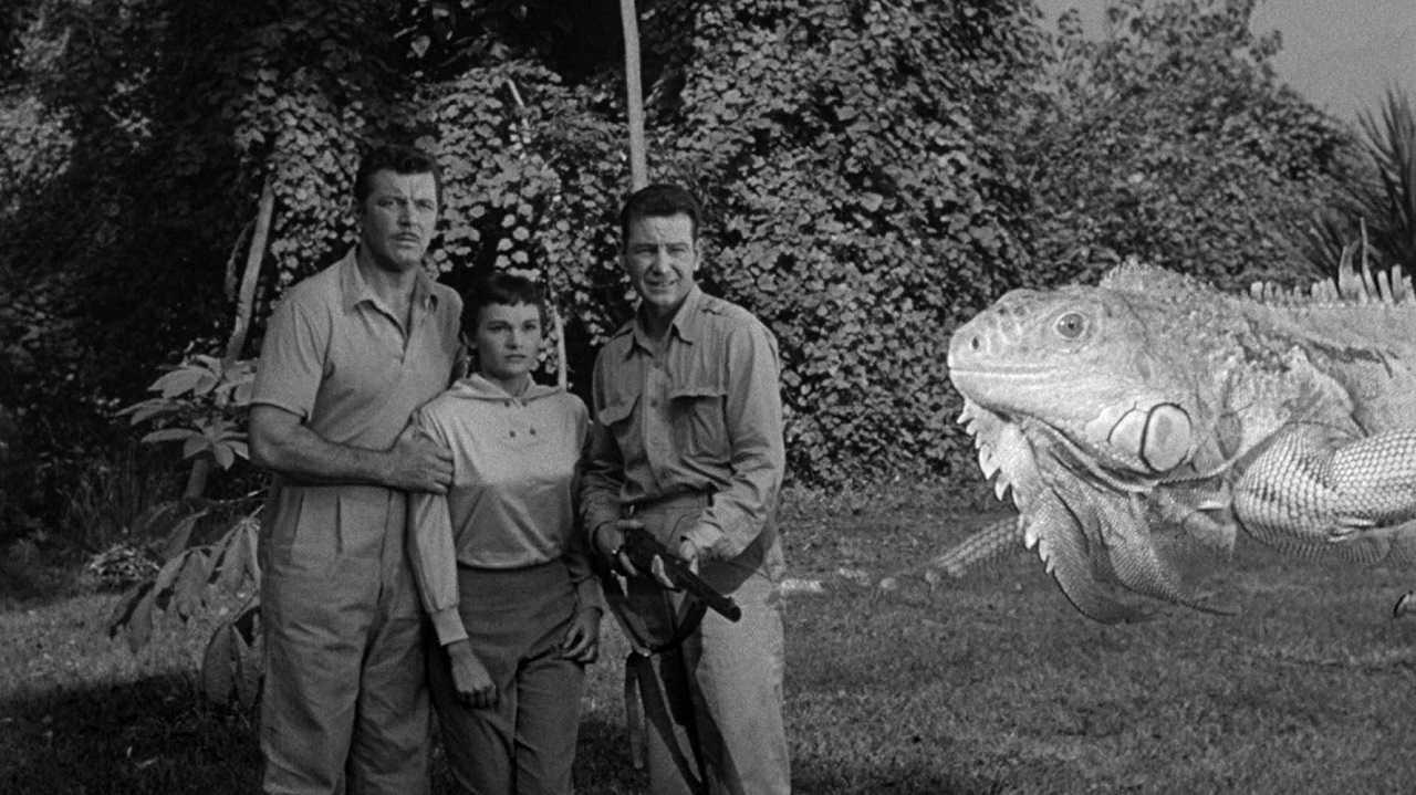 James Craig, Gloria Talbott and Tom Drake encounter an optically enlarged lizard in The Cyclops (1957)The Cyclops (1957)