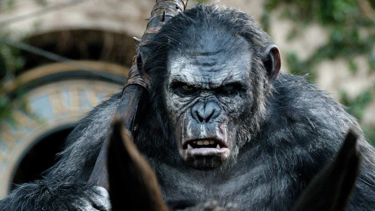 Toby Kebbell as Koba in Dawn of the Planet of the Apes (2014)