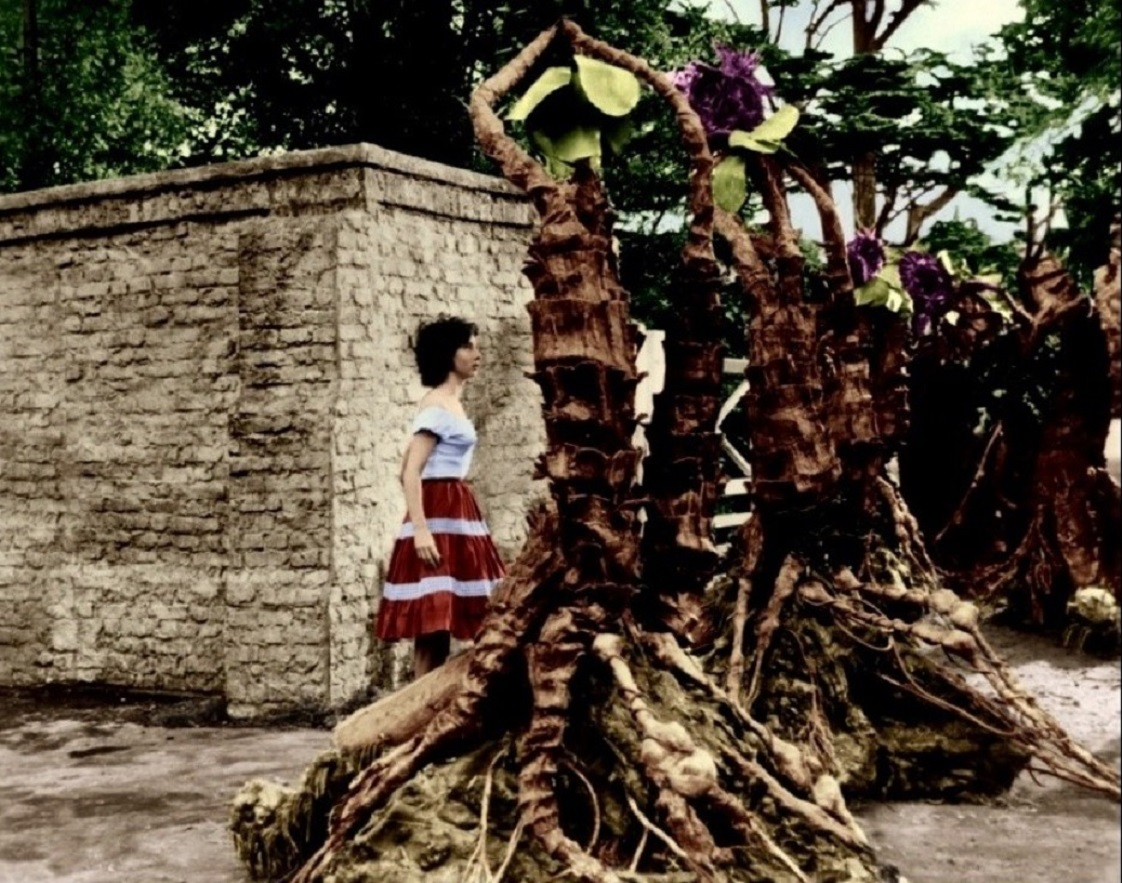 Blind Carole Ann Ford surrounded by triffids in The Day of the Triffids (1962)