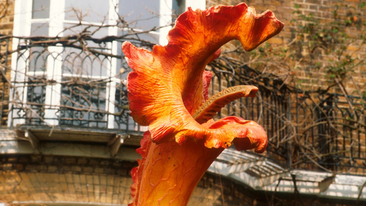 A triffid from Day of the Triffids (1981)