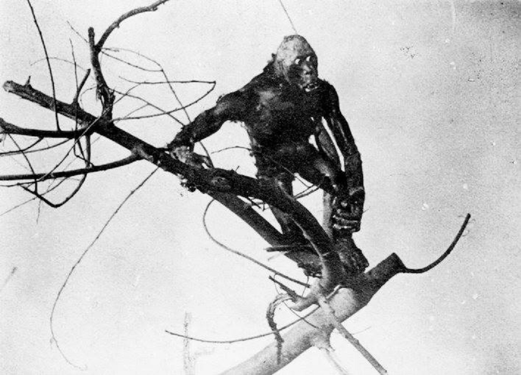 The Missing Link in The Dinosaur and the Missing Link: A Prehistoric Tragedy (1915)