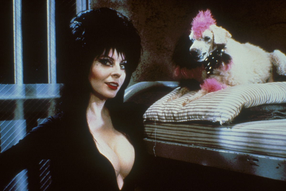 E;vira (Cassandra Peterson) and her poodle Algonquin in Elvira, Mistress of the Dark (1988)