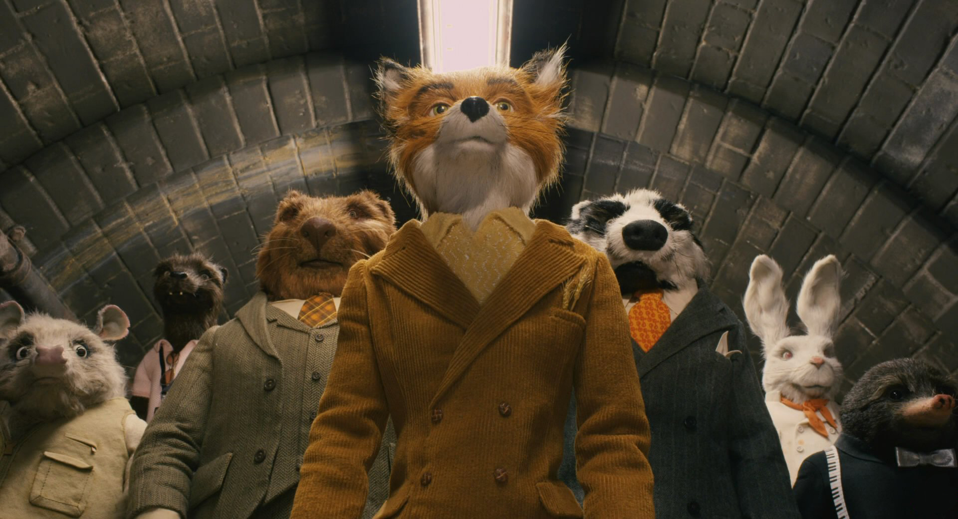 Animals off on a caper in Fantastic Mr Fox (2009)