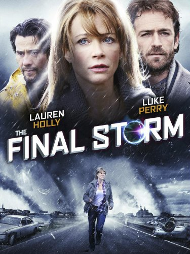 The Final Storm (2010) poster