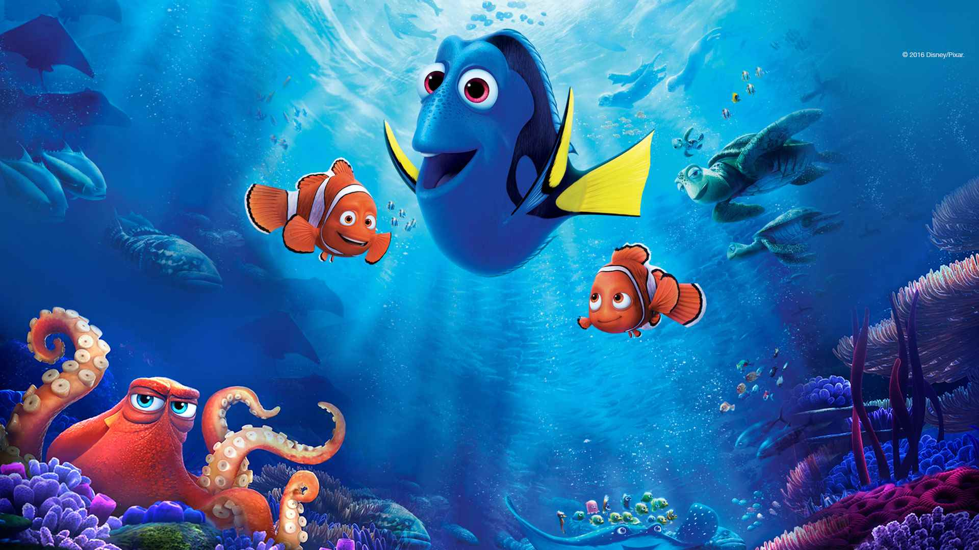 Marlin, Dory and Nemo set out on a quest in Finding Dory (2016)