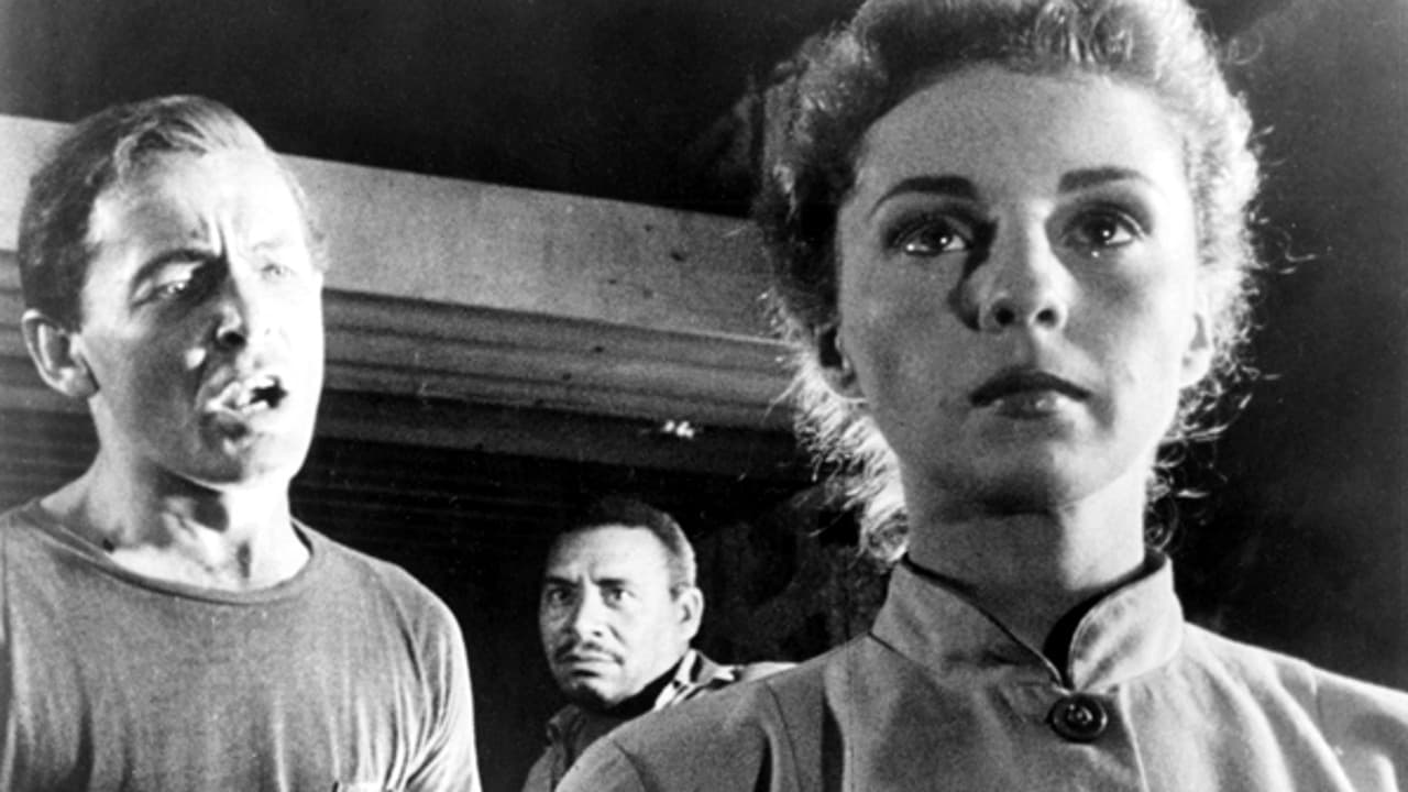 Survivors of the nuclear holocaust - (l to r) James Anderson, Charles Lampkin and Susan Douglas in Five (1951)