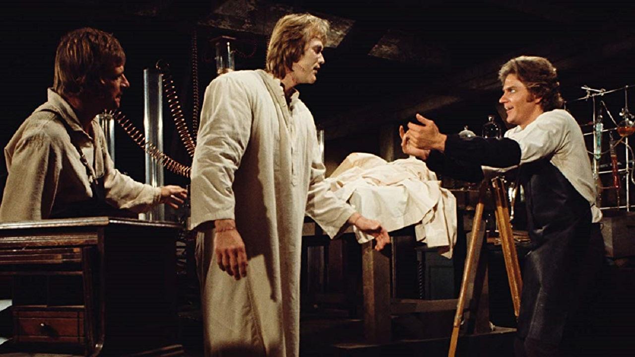 (l to r) Henry Clerval (Robert Gentry), The Monster (Bo Svenson) and Victor Frankenstein (Robert Foxworth) in Frankenstein (1973)