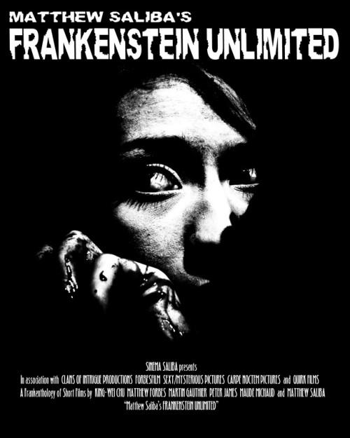 Frankenstein Unlimited (2009) poster