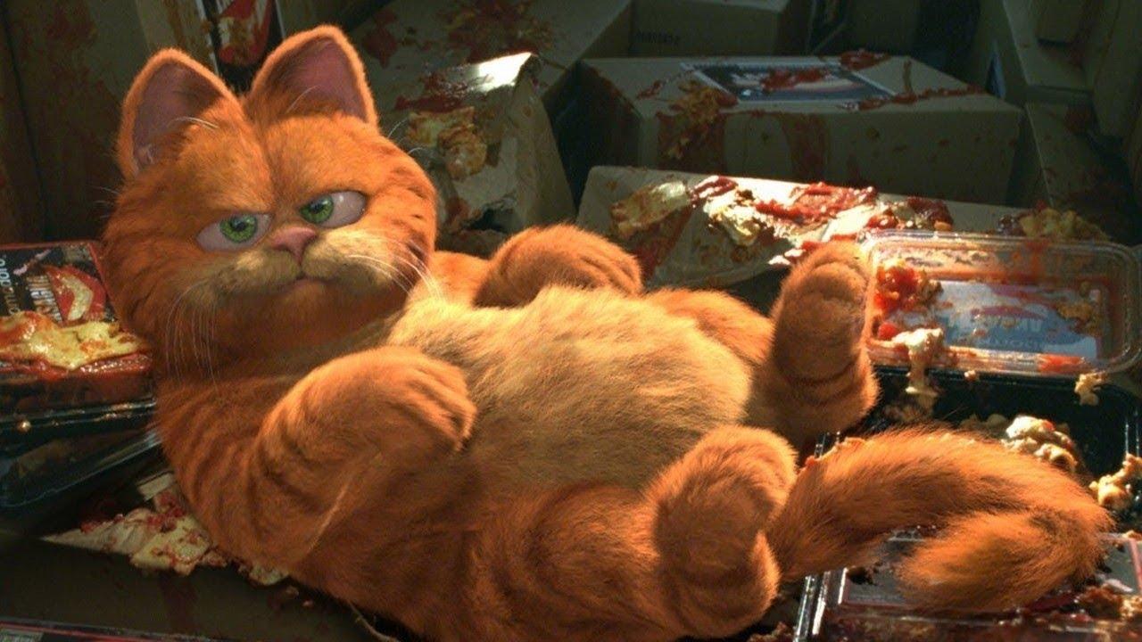 A CGI Garfield (voiced by Bill Murray) in Garfield (2004)