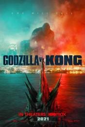 Godzilla vs Kong (2021) poster