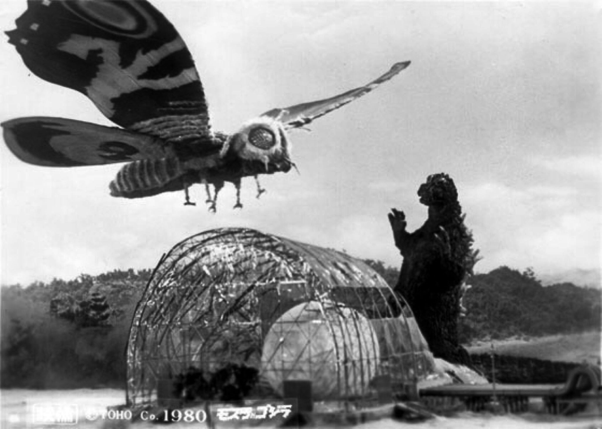 Mothra and Godzilla battle before the egg incubator in Godzilla vs the Thing (1964)