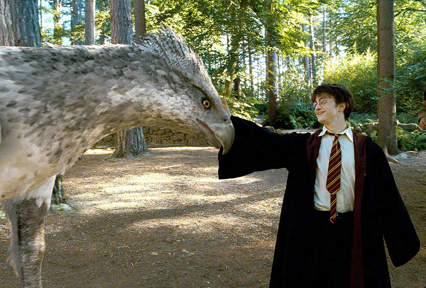 Harry Potter (Daniel Radcliffe) meets the Hippogriff in Harry Potter and the Prisoner of Azkaban (2004)
