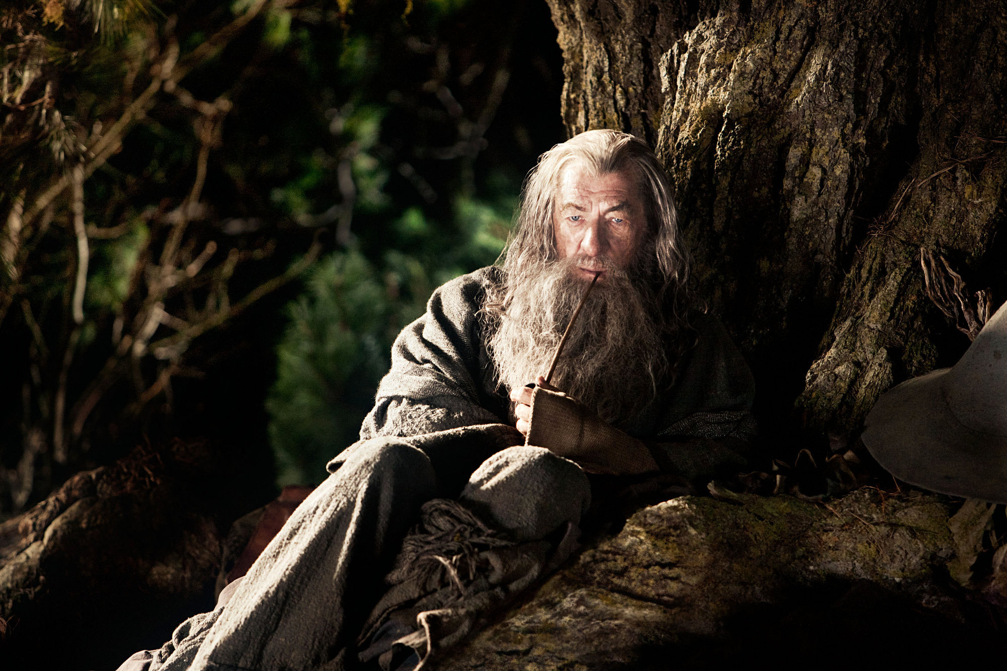 Gandalf (Ian McKellen) in The Hobbit: An Unexpected Journey (2012)