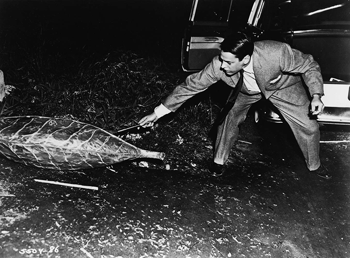 Kevin McCarthy examines a pod in Invasion of the Body Snatchers (1956)
