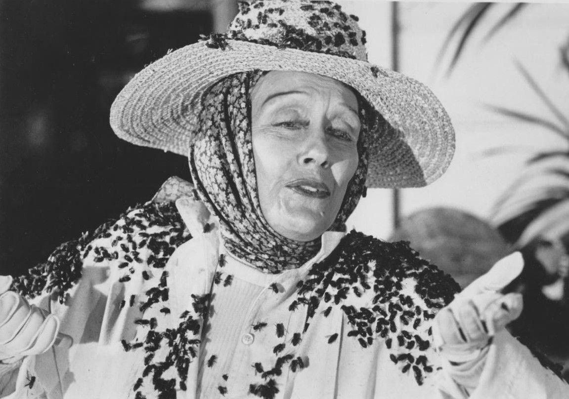 An aging Gloria Swanson surrounded by killer bees in Killer Bees (1974)