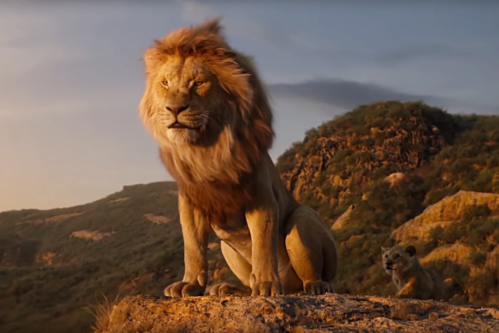 Father and son - Mufasa and Simba on Pride Rock in The Lion King (2019)