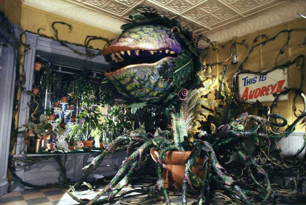 The full-size Audrey Jr in Little Shop of Horrors (1986)