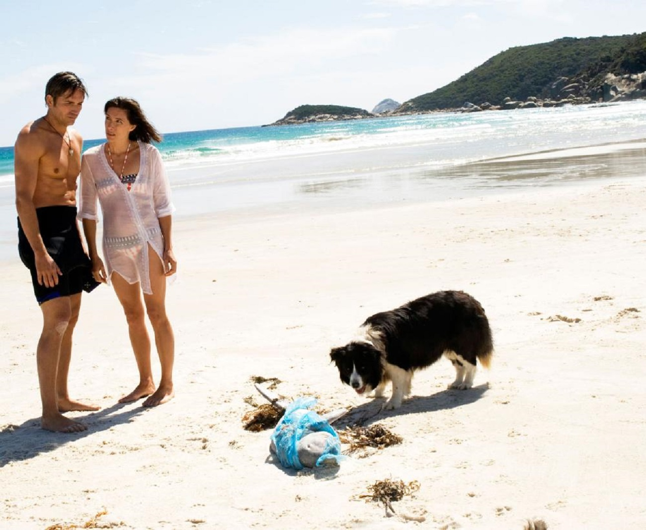Jim Caviezel and Claudia Karvan as the dog finds something on the beach in Long Weekend (2008)