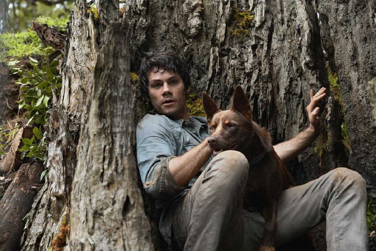 Joel Dawson (Dylan O'Brien) and the dog Boy in Love and Monsters (2020)