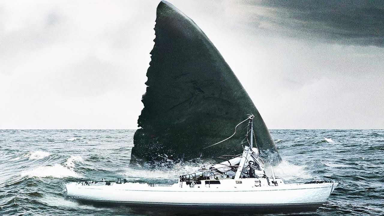The megalodon attacks a yacht in Megalodon (2018)