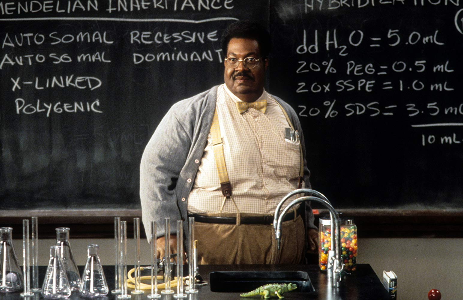 Eddie Murphy as Professor Sherman Klump in The Nutty Professor (1996)