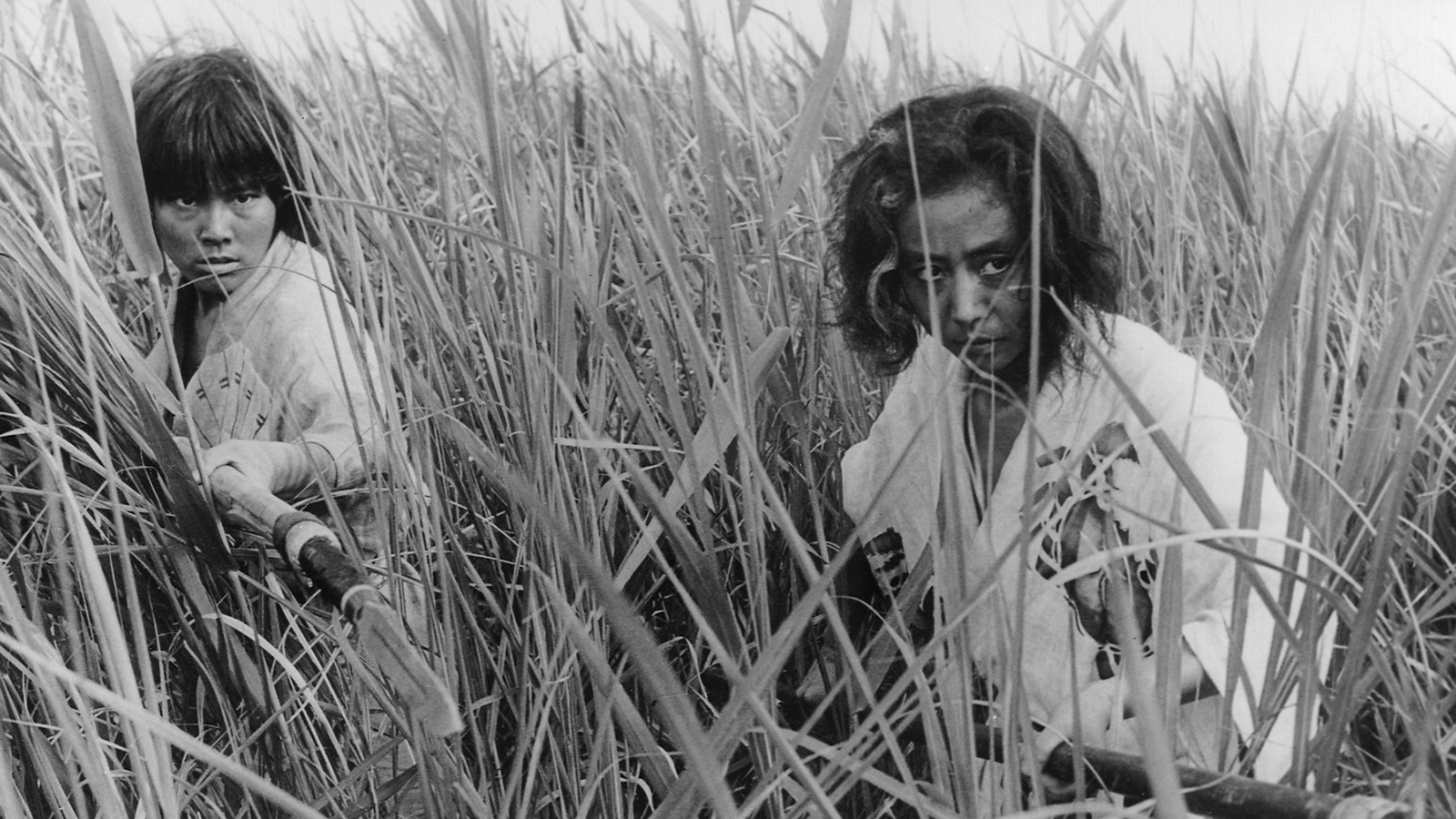 Daughter-in-law Jitsuko Yoshimura and mother Nobuko Otawa lie in wait in the sea of reeds in Oni Baba (1964)