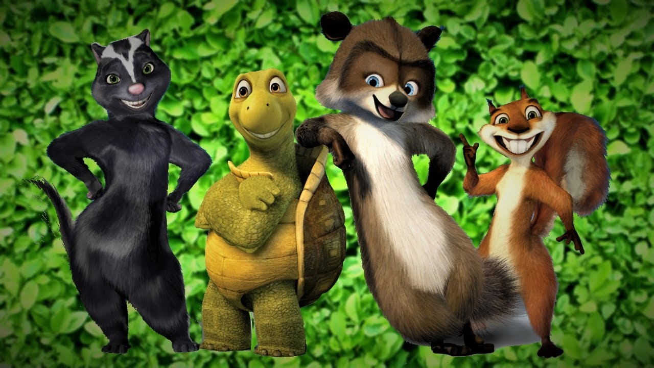 Character line-up - (l to r) Stella the skunk (voiced by Wanda Sykes), Verne the turtle (voiced by Garry Shandling), RJ the raccoon (voiced by Bruce Willis) and Hammy the squirrel (voiced by Steve Carell) in Over the Hedge (2006)