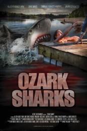 Ozark Sharks (2016) poster