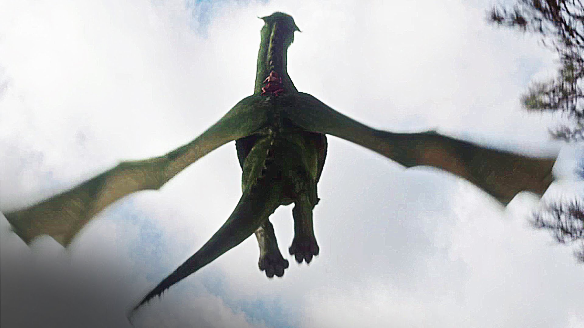 Elliott takes to the air in Pete's Dragon (2016)