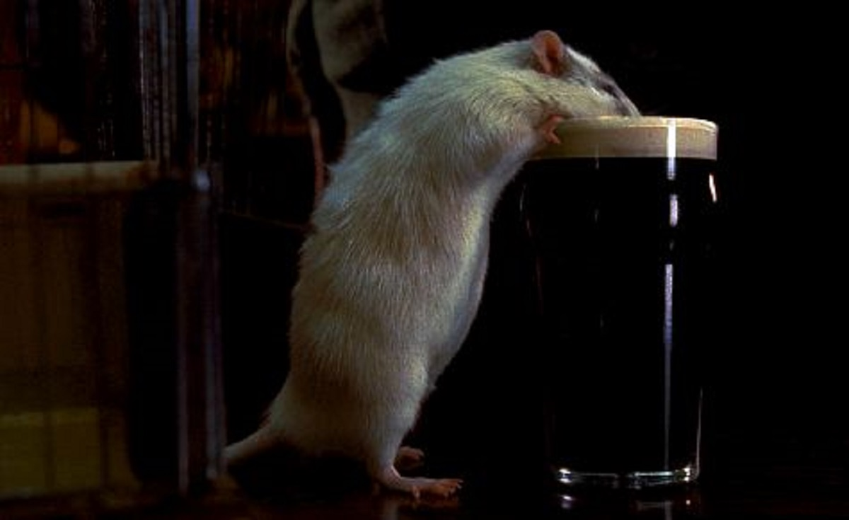 Pete Postlethwaite's man-rat goes for a pint in Rat (2000)