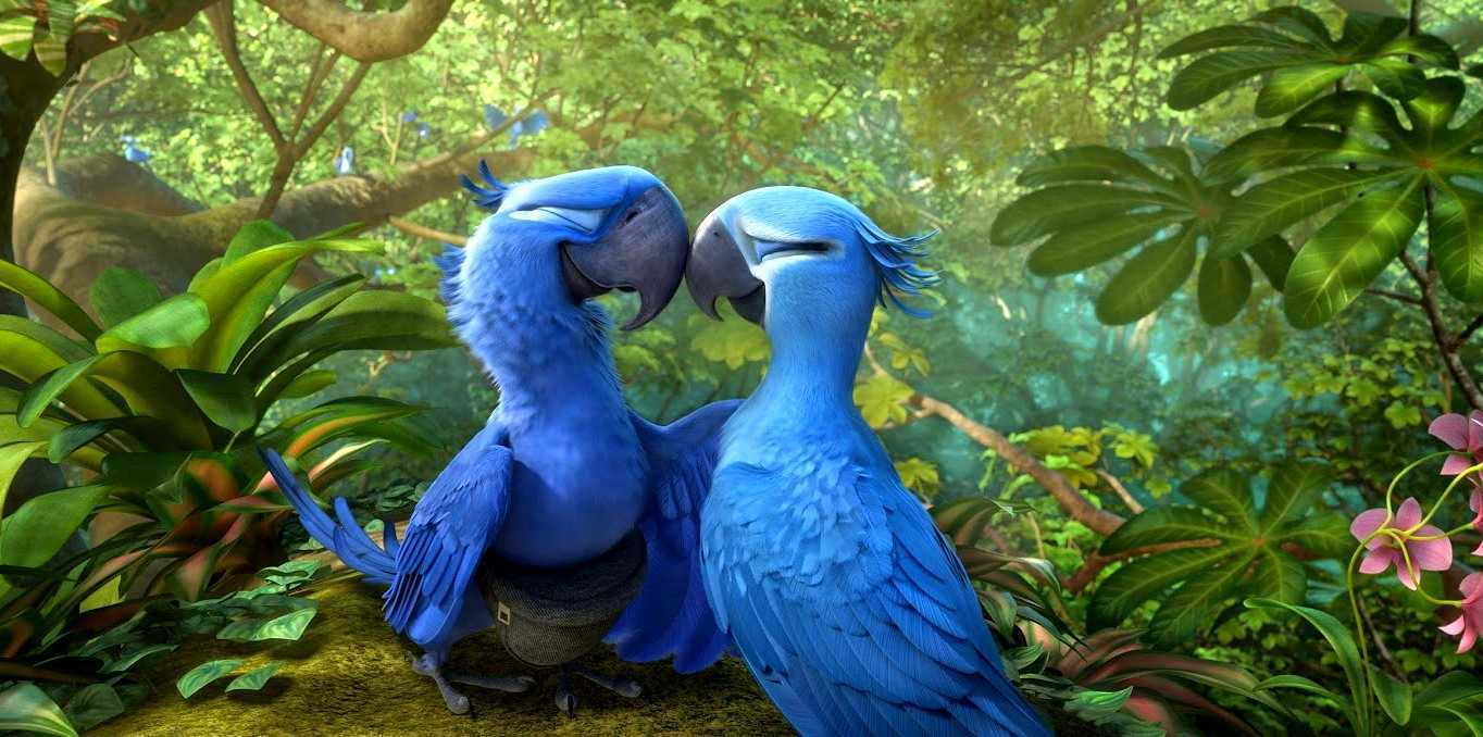 Blu and Jewel visit the Amazon in Rio 2 (2014)