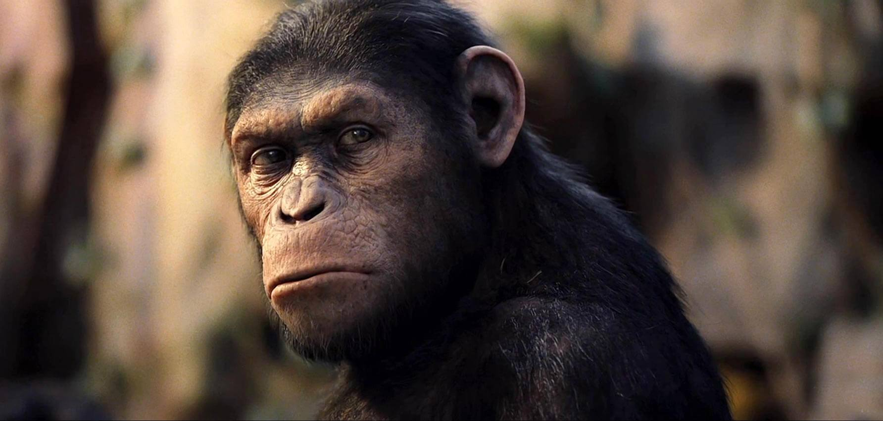 A motion capture animated Andy Serkis as Caesar in Rise of the Planet of the Apes (2011)