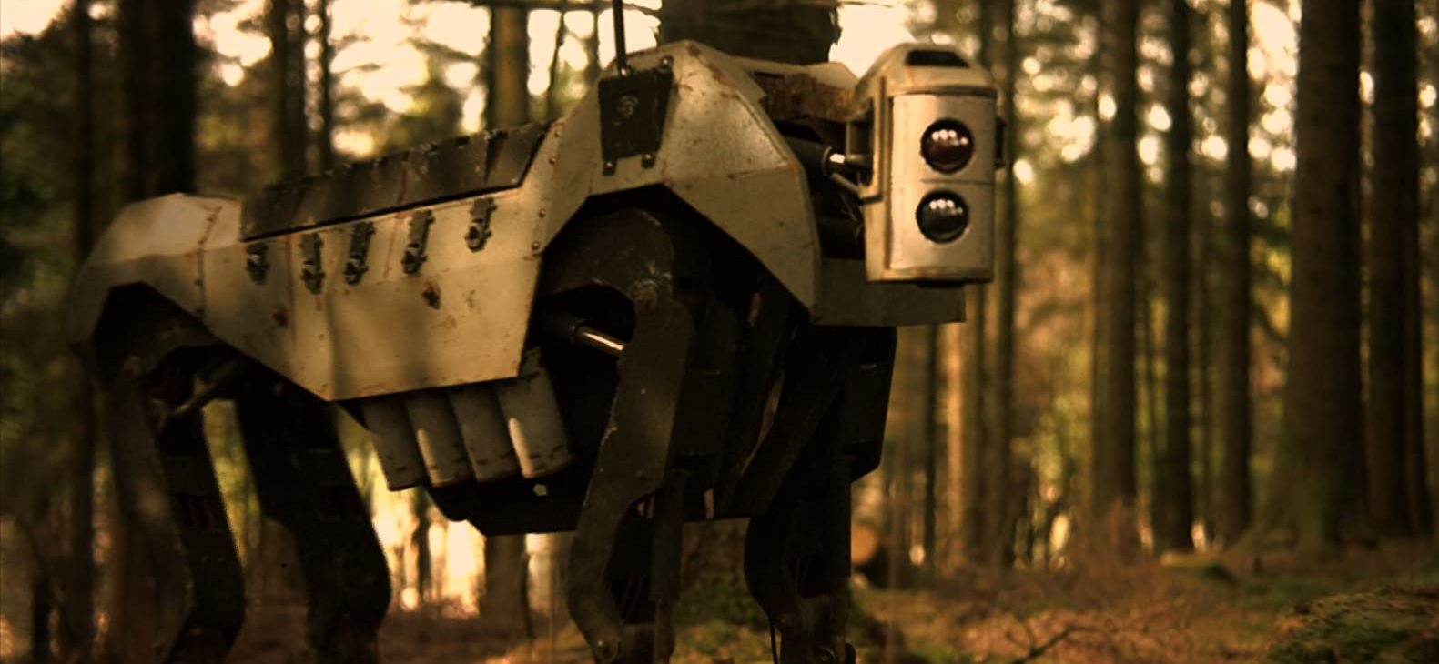 Robot dogs in Robot World (2015)